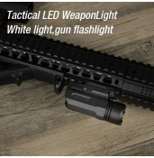 Tactical flashlight,Weapons flashlight, laser flashlight PP15-0121 | PPT P.P.T